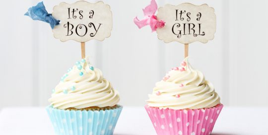 It's a Boy and it's a Girl Cupcakes