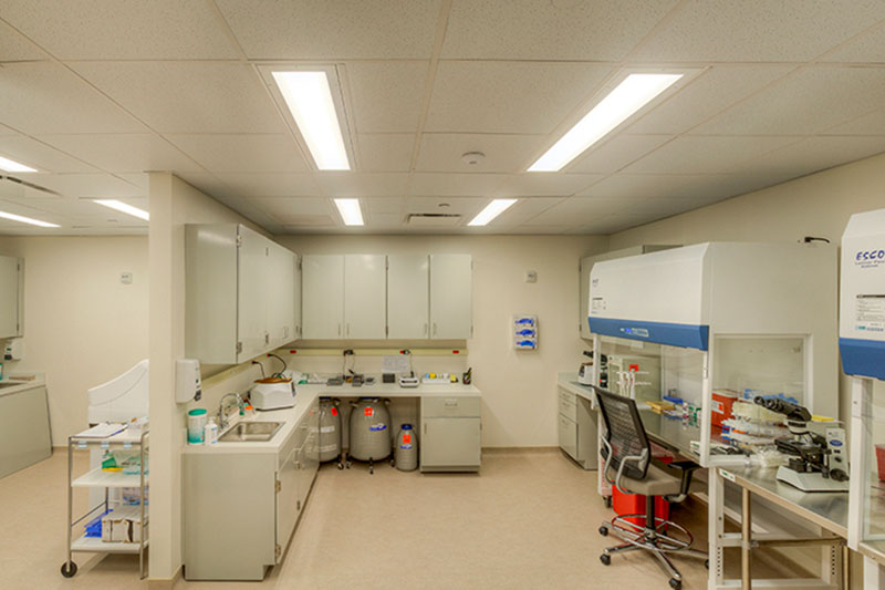 Doctors Office Laboratory