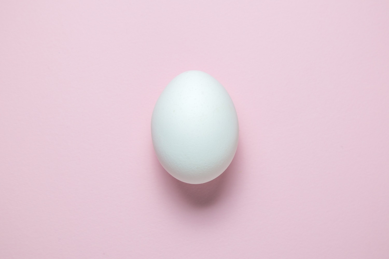 Egg on pink background