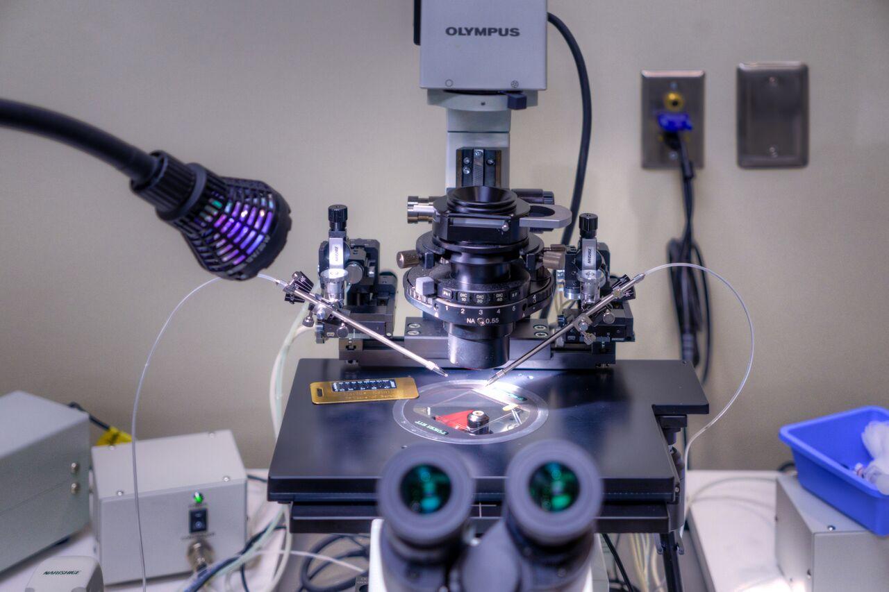 CCRM Dallas Fort-Worth lab